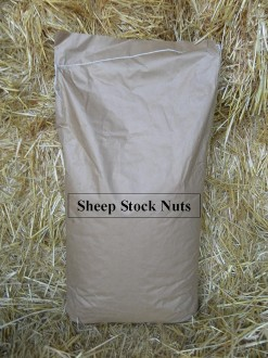 Sheep Stock Nuts 25Kg