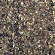 Seaweed Meal 20kg