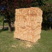 Medium bale Wheat Straw