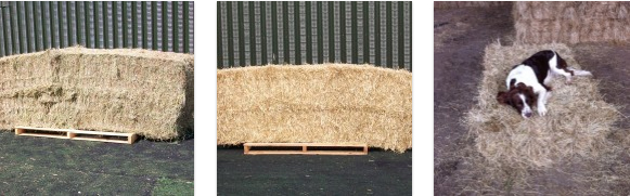 hay-for-sale-essex